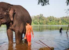 Wyprawa fotograficzna Bogowie Kerali