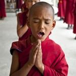 Fotoekspedycja - Buddyjskie klasztory Ladakhu - czerwiec 2012